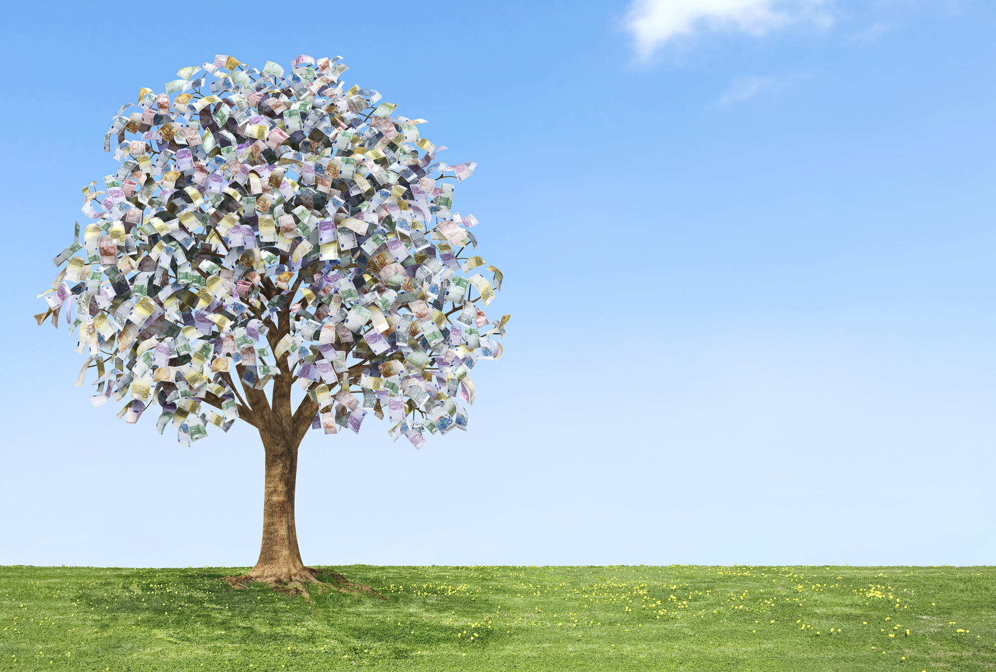 Image of a tree in abundance